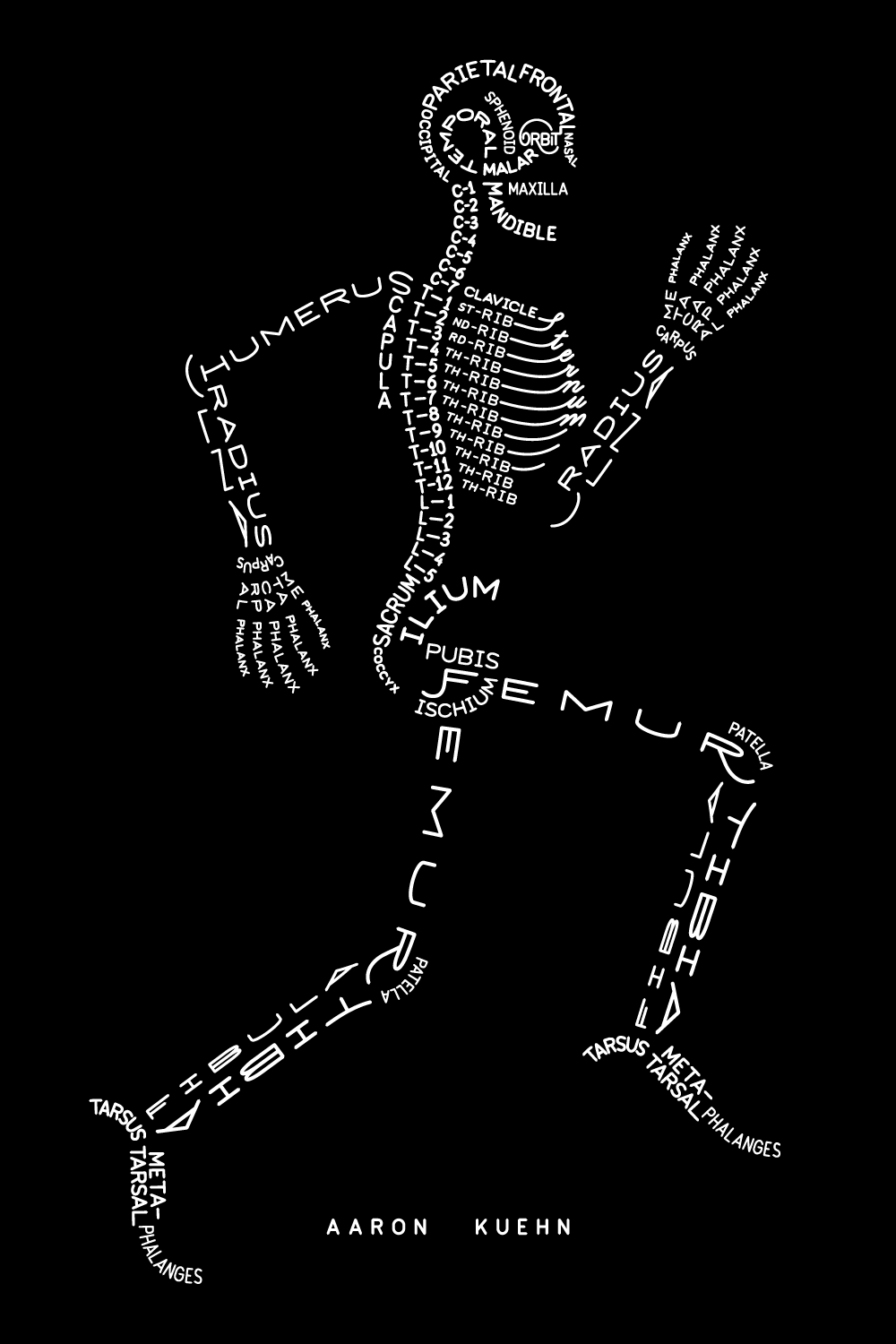 A radiological anatomical diagram and model of the human skeletal system in a running pose, composed of the names of the bones using typography.